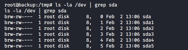 Listing of sda* devices in the /dev directory of the backup container