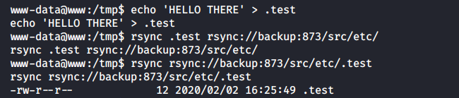 Writing a test file into the /etc folder of the backup container
