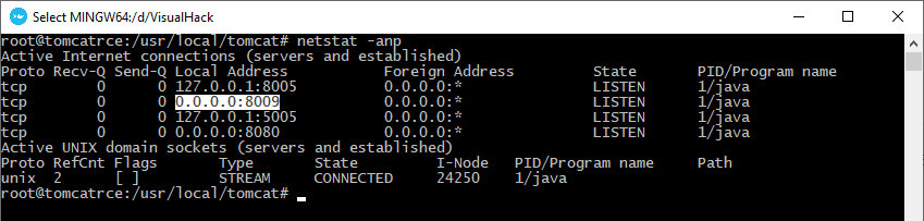 By default, Tomcat listens to the AJP port on all IPv4 addresses